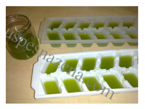 Biostimulativni sok aloe