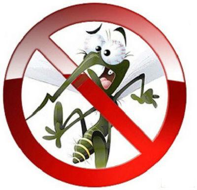 Oterajte komarce pomoću eteričnih ulja! Zamka za komarce koja deluje.