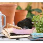 Mesečev kalendar presađivanja saksijskog cveća za 2015. godinu
