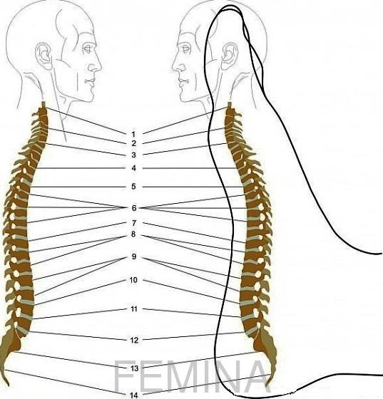 Kako eliminisati bol u leđima uz pomoć masaže stopala