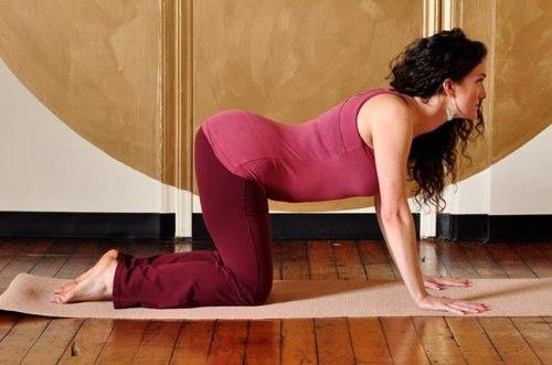 Vežbe proti bolova u leđima