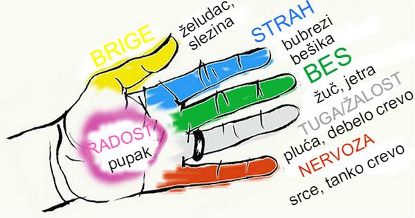 Kako su prsti na rukama neraskidivo povezani sa organima nešeg tela.Tajna harmoniji duše i tela.
