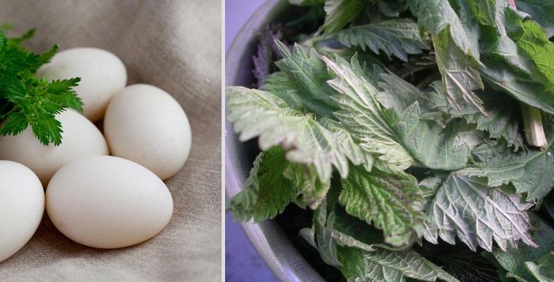 Zelena Kuvajte jaja zajedno sa listovima spanaća ili koprive, koji ih u zavisnosti od pigmenta boje u nijansu trave.