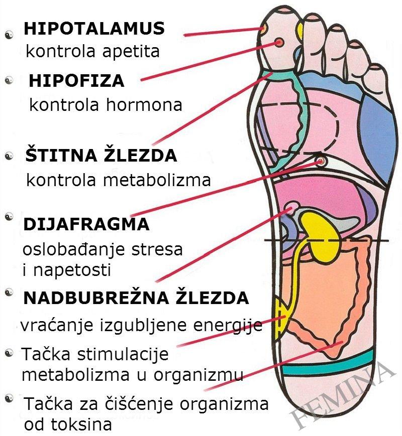 Refleksologija stopala