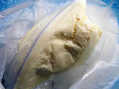 Kako napraviti domaći sladoled u vrećici