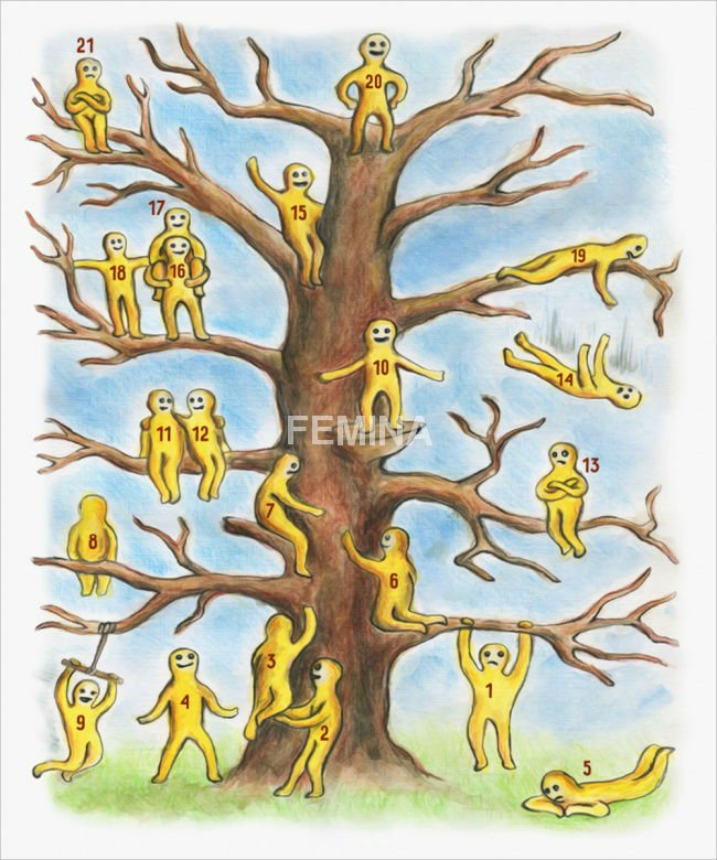 Gde ste vi na ovom drvetu?