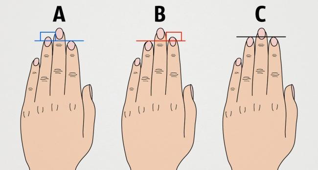 Šta dužina prstiju govori o vašem karakteru.