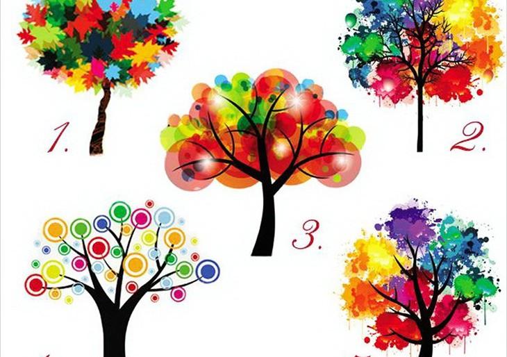 Izaberite drvo i saznajte nešto novo o sebi!