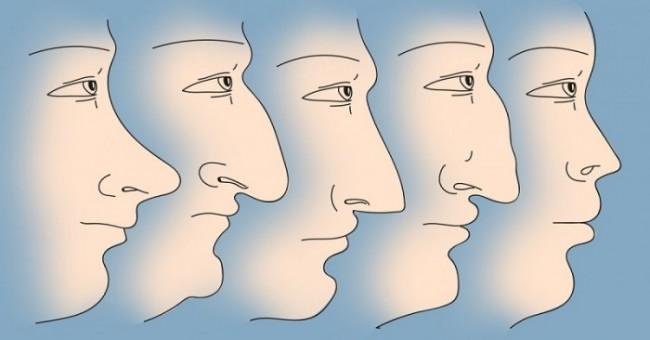 Šta oblik i veličina nosa govore o vama