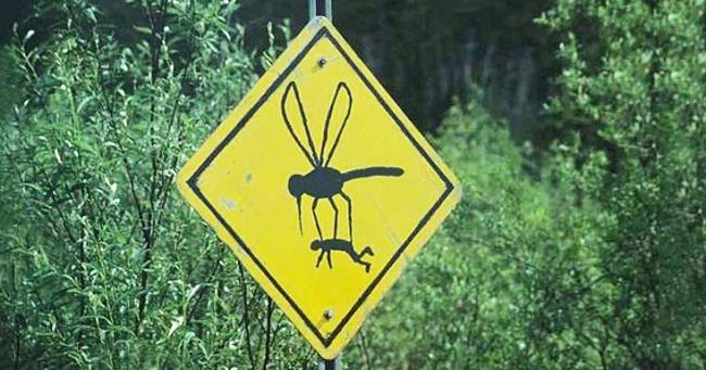 Zašto komarci neke ljude ujedaju više nego druge.
