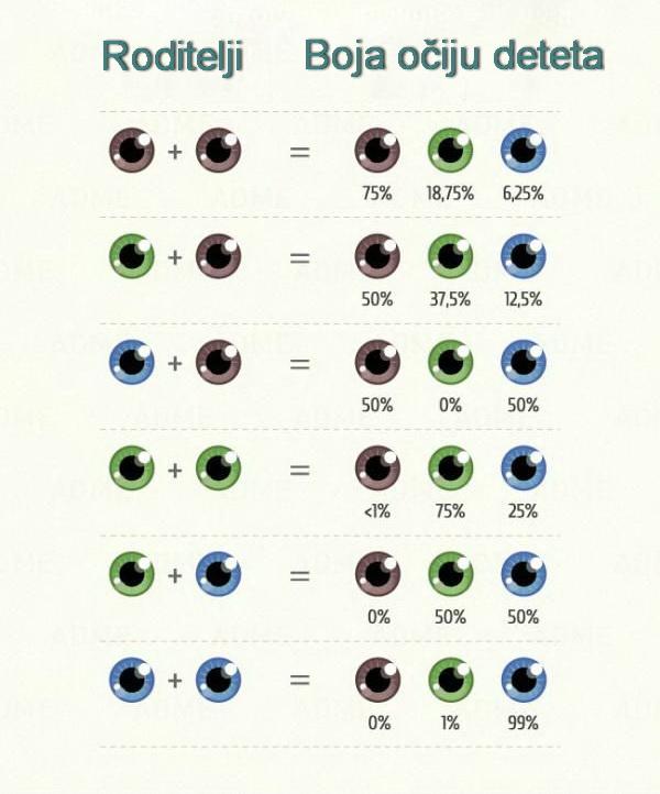 kakvu će boju očiju imati vaše dete