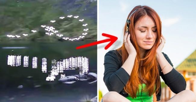 Naučnici su otkrili da ova melodija smanjuje nivo stresa za 65%.