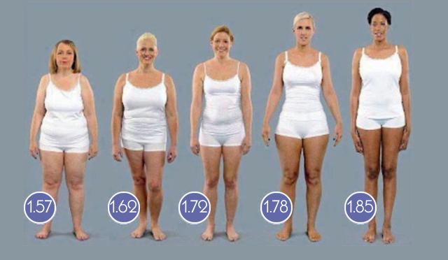 Profesionalna tabela odnosa visine i težine za žene i muškarce