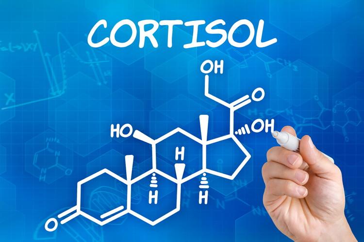 Kako smanjiti visoki nivo kortizola