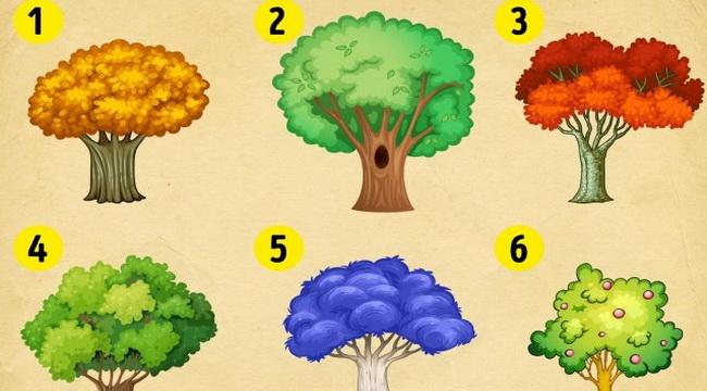 Izaberite drvo i saznajte kakve promene vas očekuju u novoj godini