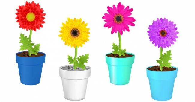 Izaberite kombinaciju boja koja vama najviše prija i saznajte šta o tome kažu psiholozi