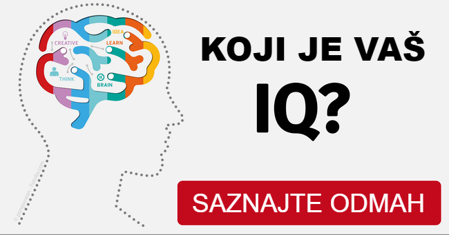 Najkraći IQ test na svetu