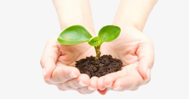 Čuvajte seme