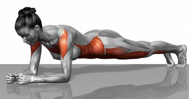 12 verzija planka za sve grupe mišića, koje će vam zameniti članstvo u teretani