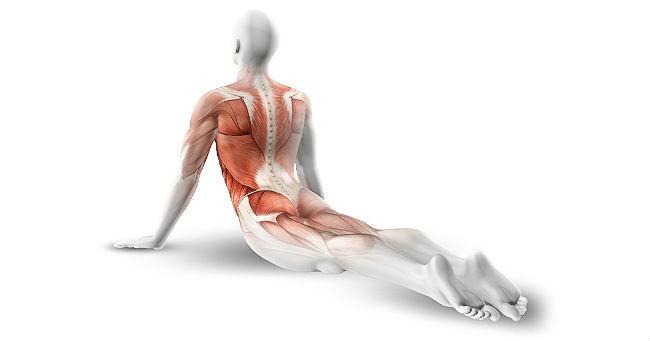 10 jednostavnih vežbi za otklanjanje bola u leđima i jačanje trbušnih mišića
